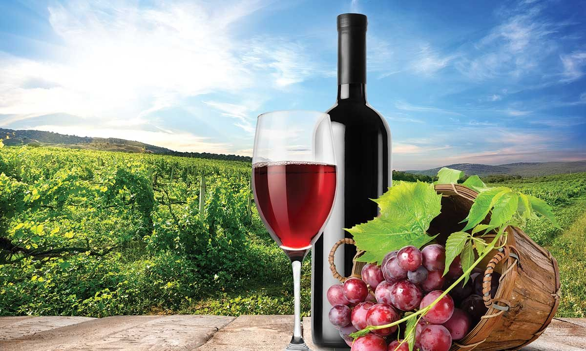 Wine Tasting Offers – Southwest Michigan